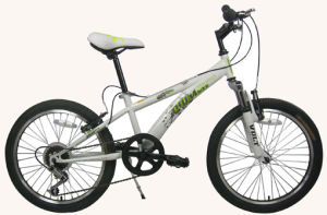 20′children Bike Kids Bicycletmm-20ba-R