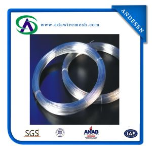 Direct Factory Supply Good Quality Galvanized Iron Wire (ADS-GW-05) pictures & photos