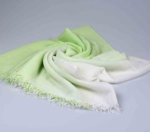 2017 New Ladies Cashmere Shawl DIP Dye Greenery Color pictures & photos