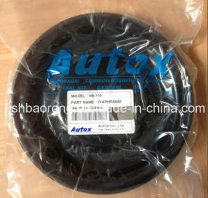 Diaphragm/Seal Kits for Furukawa Hydraulic Hammer Hb700 pictures & photos