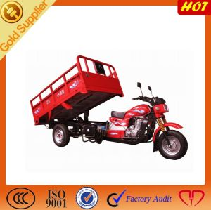 New Dumper Tricycle pictures & photos