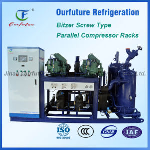 Screw Bitzer Compressor Units for Cold Storage