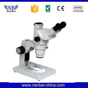 Laboratory with Images of Cheap Price Electron Microscope pictures & photos