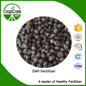 DAP Diammonium Phosphat 18-46-0manufacturers Fertilizer pictures & photos