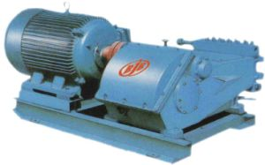 Electric Reciprocating Pump pictures & photos