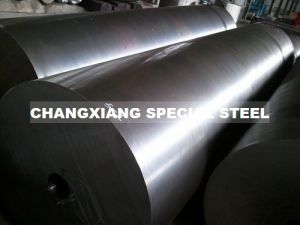 1.2360 Cold-Working Mold Steel