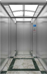Braun Elevator 450kg-1600kg Machine Room-Less Passenger Elevator/Lift