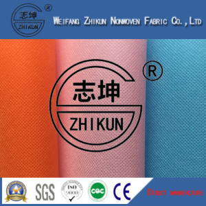 Spunbond PP Non Woven Fabric of Shopping Bags (20G-100G) pictures & photos