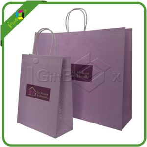 Packaging Paper Bag / Promotional Paper Bags pictures & photos