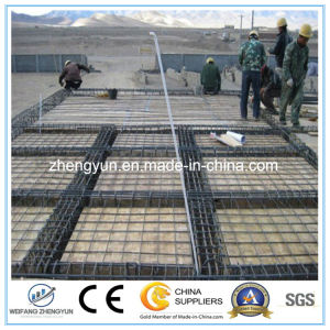 High Quality Concrete Reinforced Steel Bar Welded Wire Mesh pictures & photos