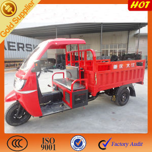 Cargo Coverd Cars Trucks Rickshaw for Sale pictures & photos