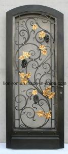 Eyebrow Top Wrought Iron Interior Door Home Design pictures & photos