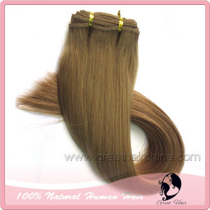Remy Human Hair Weft (GH-HW007)