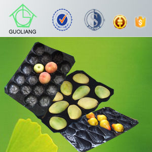 Eco Friendly Biodegradable PP&PVC Fresh Fruit Insert Tray for Mango Packaging pictures & photos