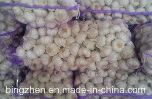 2017 New Crop Fresh White Garlic pictures & photos