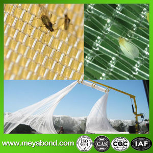 100% Virgin HDPE Agriculture Anti Insect Net, White Fly Net pictures & photos