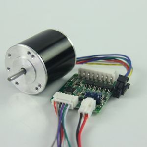 Ws2845 10000rpm Electric Bike 12V DC Motor pictures & photos