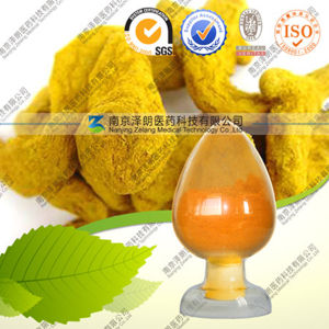 Natural Health Care Product Curcuma Longa Extract Curcumin pictures & photos