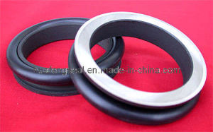 Seal Group (CKV-011-Y) Used for Motor Reducer pictures & photos