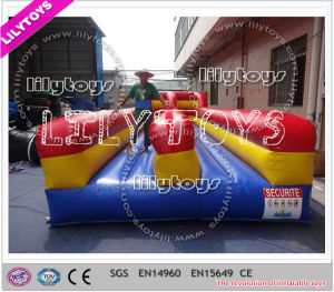 Lilytoys Hot Selling Inflatable Bungee Run for Sale (J-SG-049) pictures & photos