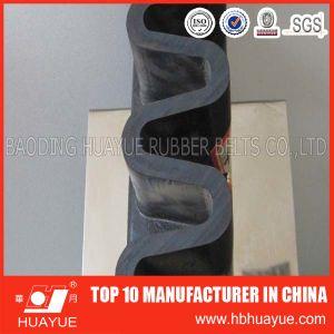 DIN Standard Apron Belt/Sidewall Conveyor Belt pictures & photos