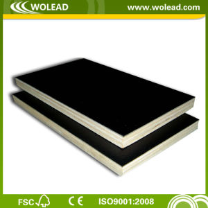 High Quality Film Faced Plywood for Construction (w15494)