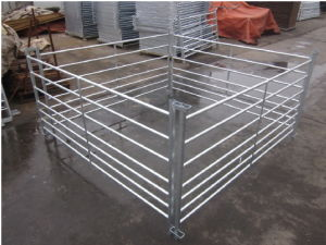 Sheep Fence Hdp Galvanized Customized on Sale pictures & photos
