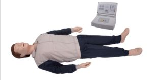Jc/CPR300s CPR Training Manikin