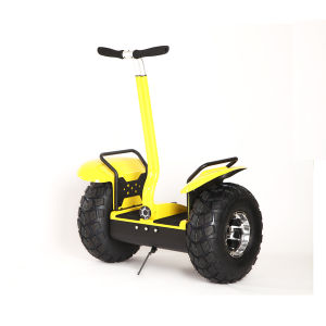 Street Legal Personal Transporter for off Road pictures & photos