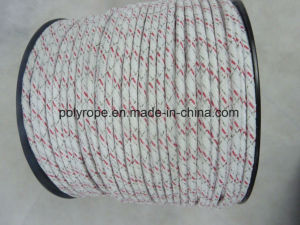 HDPE Electric Braid pictures & photos