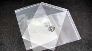 Reclosable Printed Ziplock Plastic Bags for Food (FLZ-9206) pictures & photos
