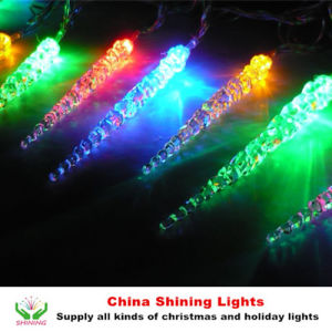 LED Decoration Christmas Lights pictures & photos
