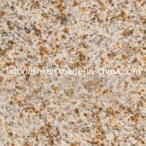 Polished G682 Granite Shandong Granite, G350 Yellow Rusty Grainte Tiles pictures & photos