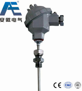 Armored Thermometer Thermocouple/Thermal Resistance (RTD) pictures & photos
