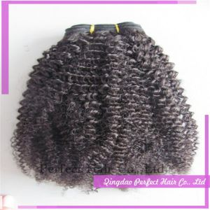 Top Quality 6A+ Fashion Afro African Curly Weft Bundles pictures & photos