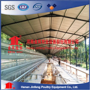 Jinfeng Layer Egg Chicken Cage/Poultry Farm House Designs for Chicekn Farm Equipment pictures & photos