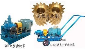 KCB1200 Big Gear Transfer Oil Pump pictures & photos