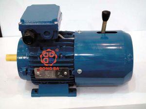 YEJ2 Automatic Electromagnetism Brake Motor