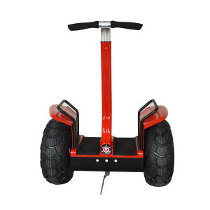 Chinese 2 Wheels Scooter Electric pictures & photos