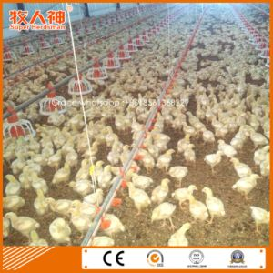 Automatic Poultry Equipment for Broiler with Customized Poultry Shed Construction pictures & photos