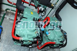 Bahrain 10t Water Chiller-Icw240 pictures & photos
