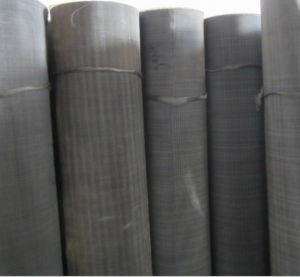 Black Wire Mesh/Mild Steel Wire Mesh/Black Wire Cloth pictures & photos