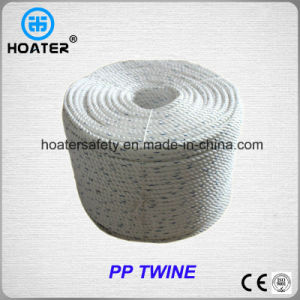 2017 Hot Selling 3 Strand Twist PP Twine with High Strength pictures & photos