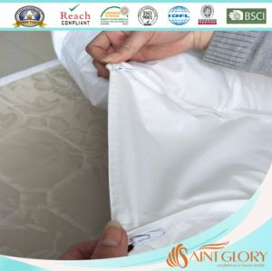 Profeesional Factory Selling U Shaped Pregnancy Pillow pictures & photos
