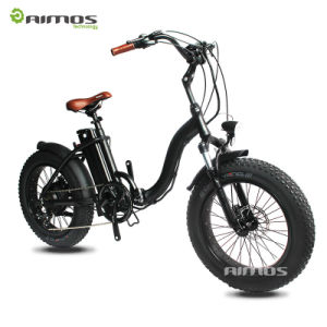 Low Price Electric Bicycle pictures & photos