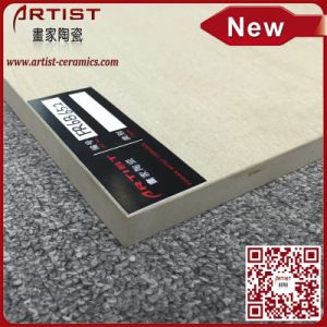 Garden Tile for Floor for Exterior Use Thick 20mm Size 600X600 pictures & photos