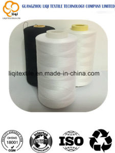 100 Polyester Embroidery Thread with Various Colour for Clothes pictures & photos