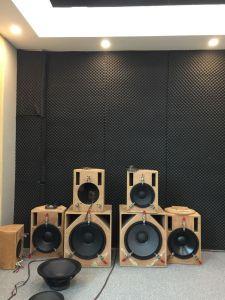 N450 Professional Loudspeaker Titanium Hf Compression Driver pictures & photos
