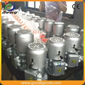 Yej /Y2ej/Msej Cast Iron Body AC Motor 0.55kw pictures & photos