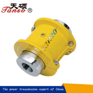 Js Type High Speed Grid Couplings for General Machinery pictures & photos